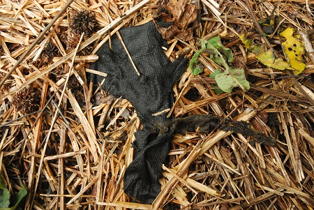 Ground with cloth and straw.jpg
