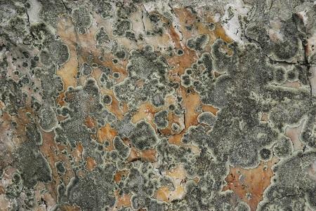 Ground with granite.jpg