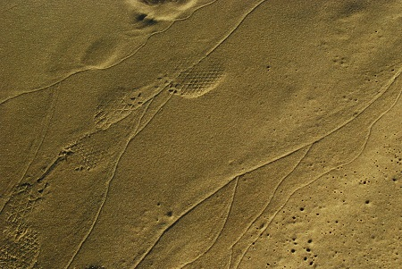 Ground with sandy traces