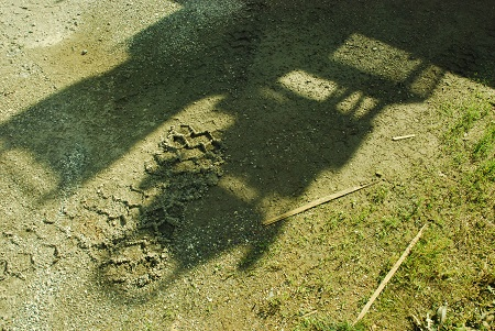 Ground with truck shadow_1051.jpg